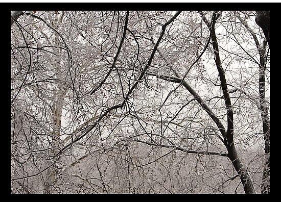 Ice maze by danabee