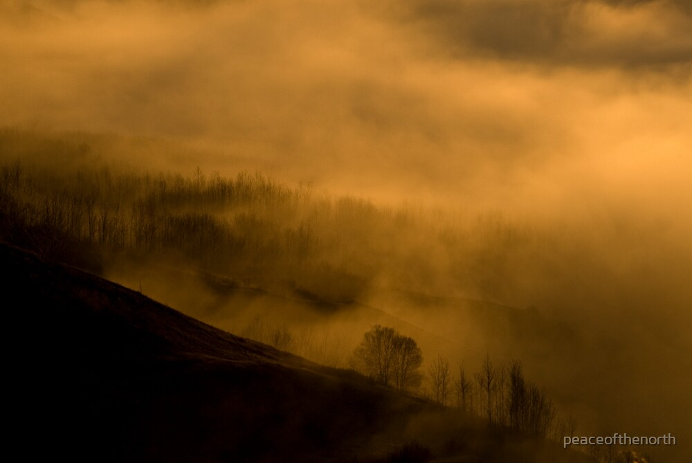 Cool Fog Rising by peaceofthenorth