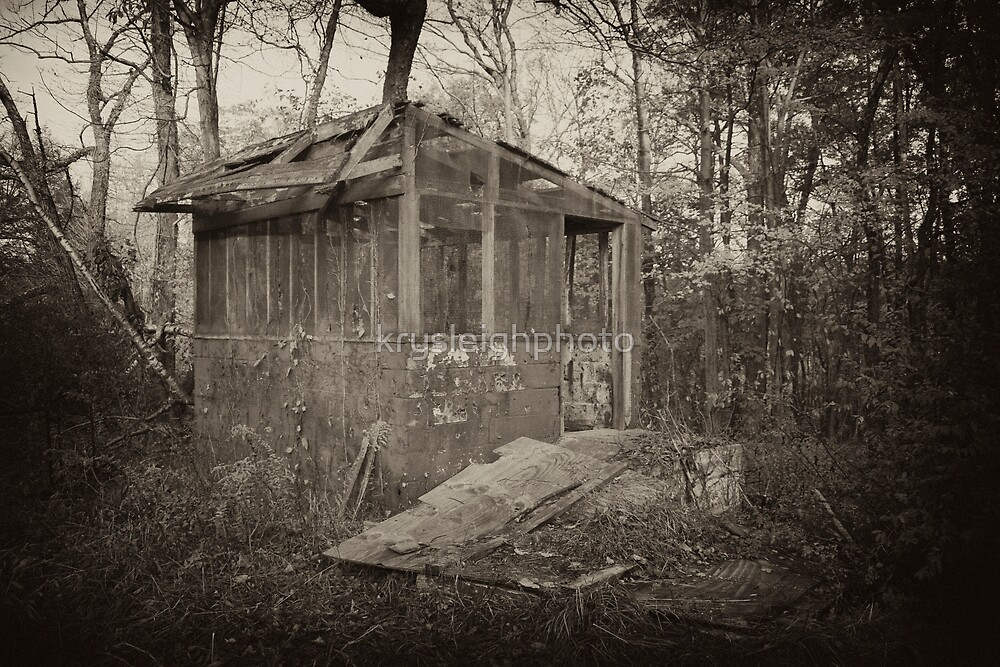Cabin in the woods by krysleighphoto