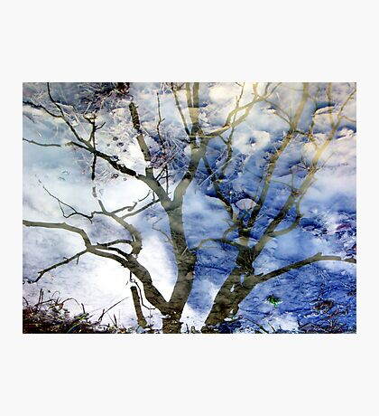 Ice puddle reflections Photographic Print