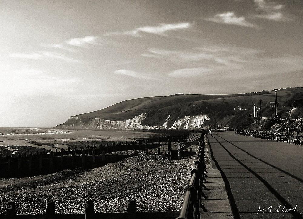 Eastbourne Promenade by Martin Kirkwood (photos)