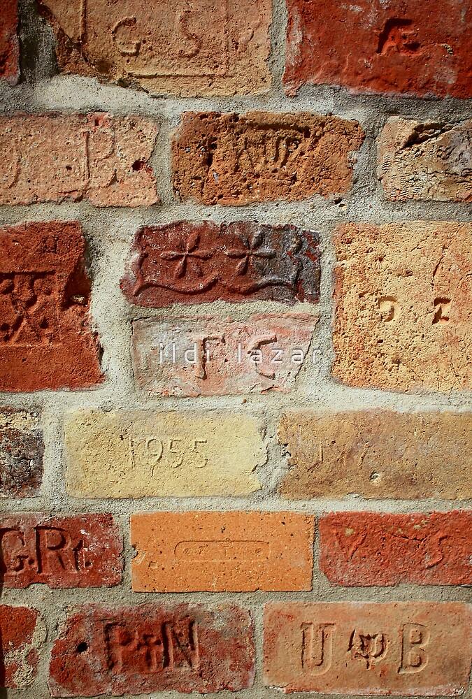 Brick wall by i l d i    l a z a r