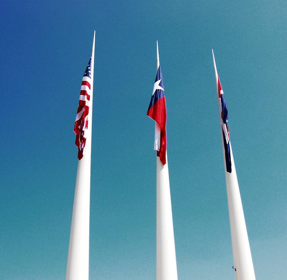 patriotic by atomicmama