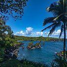 Maui Hana Black Sand Beach by photosbyflood