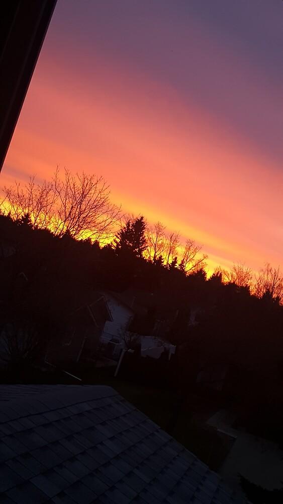 fall sunrise in canada by rosemaryh1