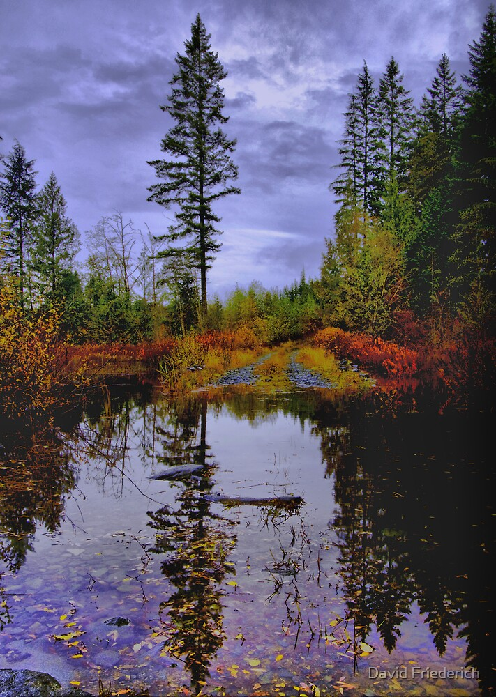 Autumn Colors by David Friederich