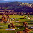 Alexandra foothills by Elaine Stevenson