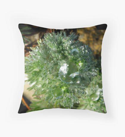 Rockery2 Throw Pillow