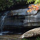 Hickory Nut Falls at Chimney Rock by Anna Lisa Yoder