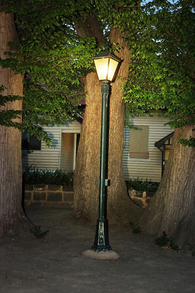 Lamp Post by freddy0707