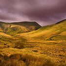 Moorland Views by Dave Hare