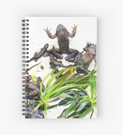 Froggy Furore #2 Spiral Notebook