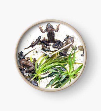 Froggy Furore #2 Clock