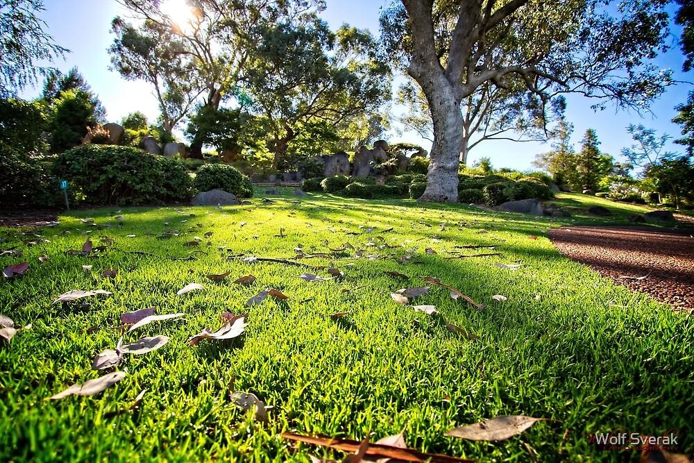 Japanese Garden in Cowra/NSW/Australia (3) by Wolf Sverak