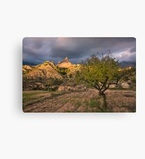 Fruit trees and mountain peaks Canvas Print