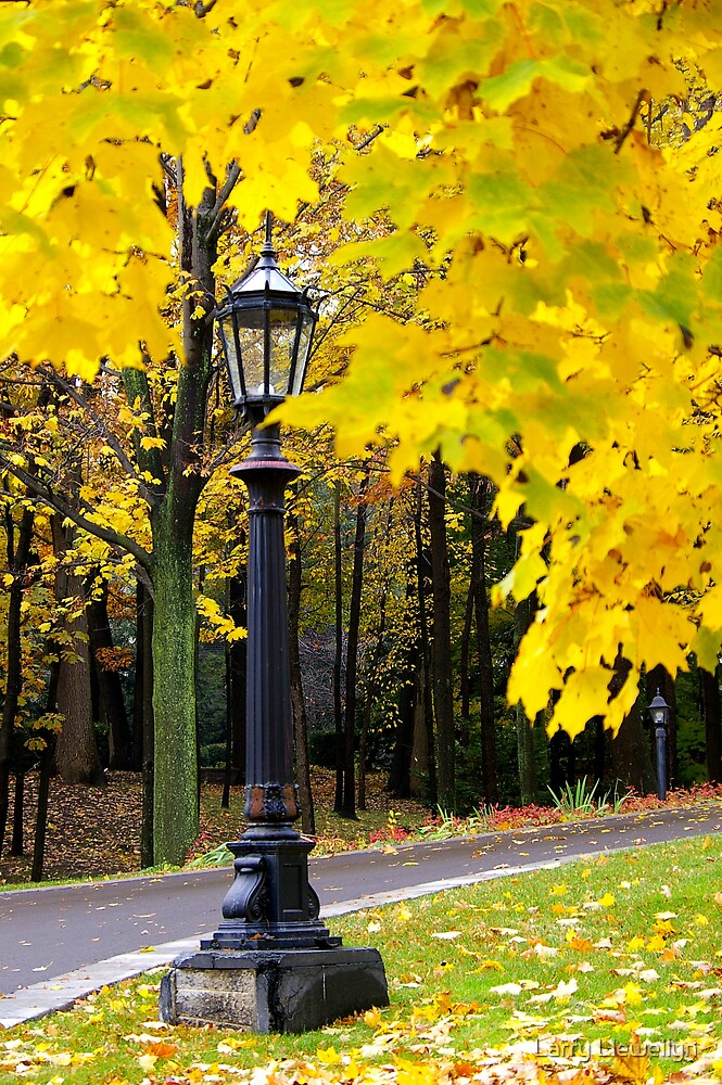 A Lamp Post...in Autumn.. by Larry Llewellyn