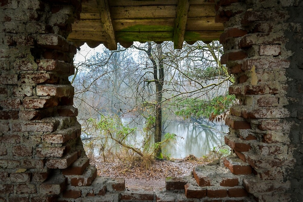 Window by MiramVi
