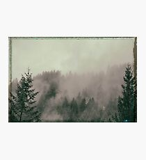 driving through the foggy Canyon of the Pacific NW Photographic Print