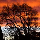 Would you believe LYGON St Carlton by robertb