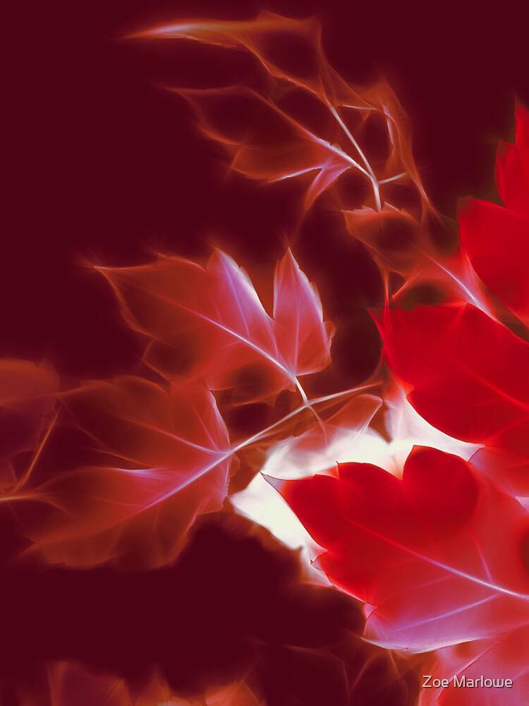 Infrared Leaves by Zoe Marlowe
