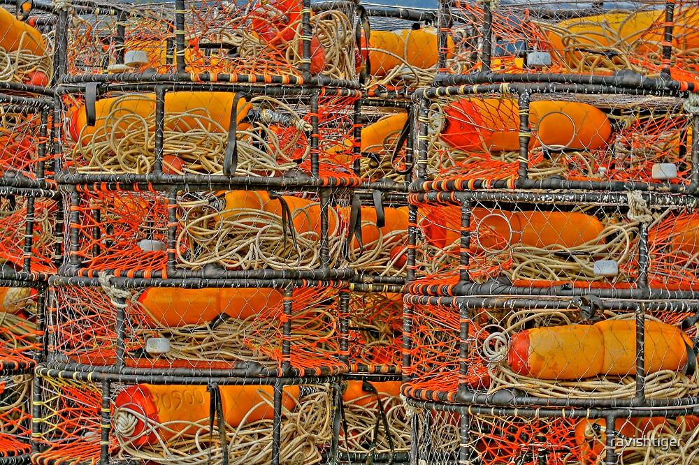 Crab traps by ravishtiger
