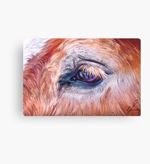 Eyelashes Canvas Print