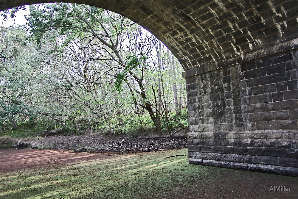 Under the bridge by AlMiller