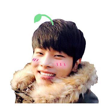 Cute sprout Hakyeon (N) | VIXX by ichigobunny