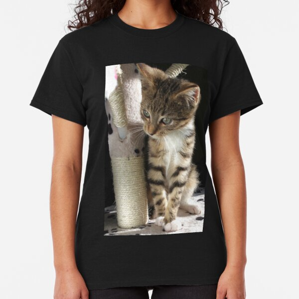 Kitten playing on cat tree Classic T-Shirt