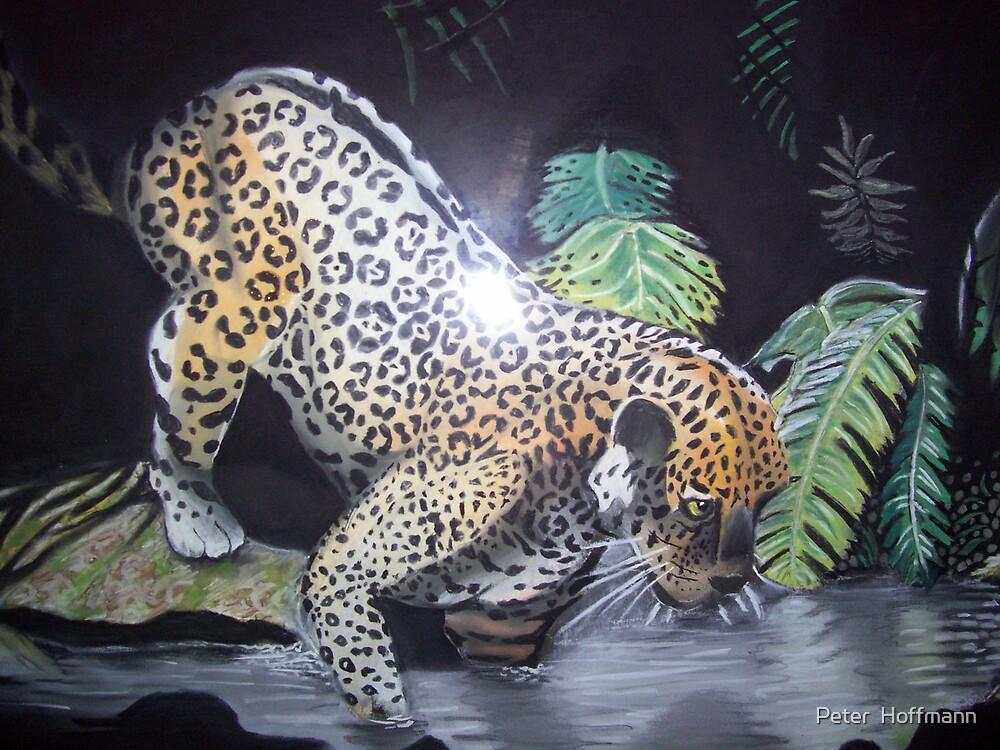 jaguar by Peter  Hoffmann
