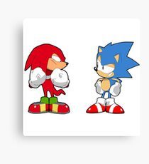 Sonic Mania Sonic & Knuckles Canvas Print