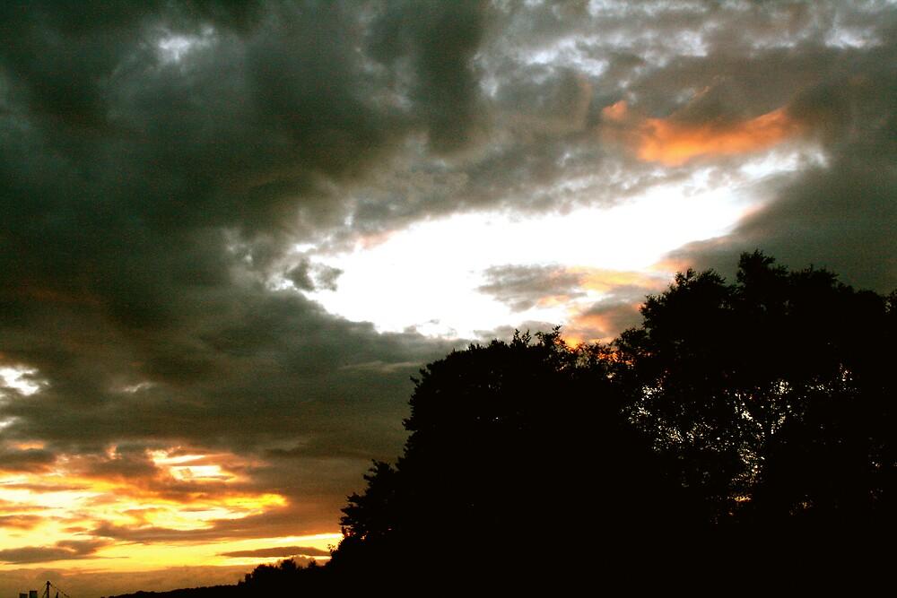 Buddhafield cloudscape by Amanda Gazidis