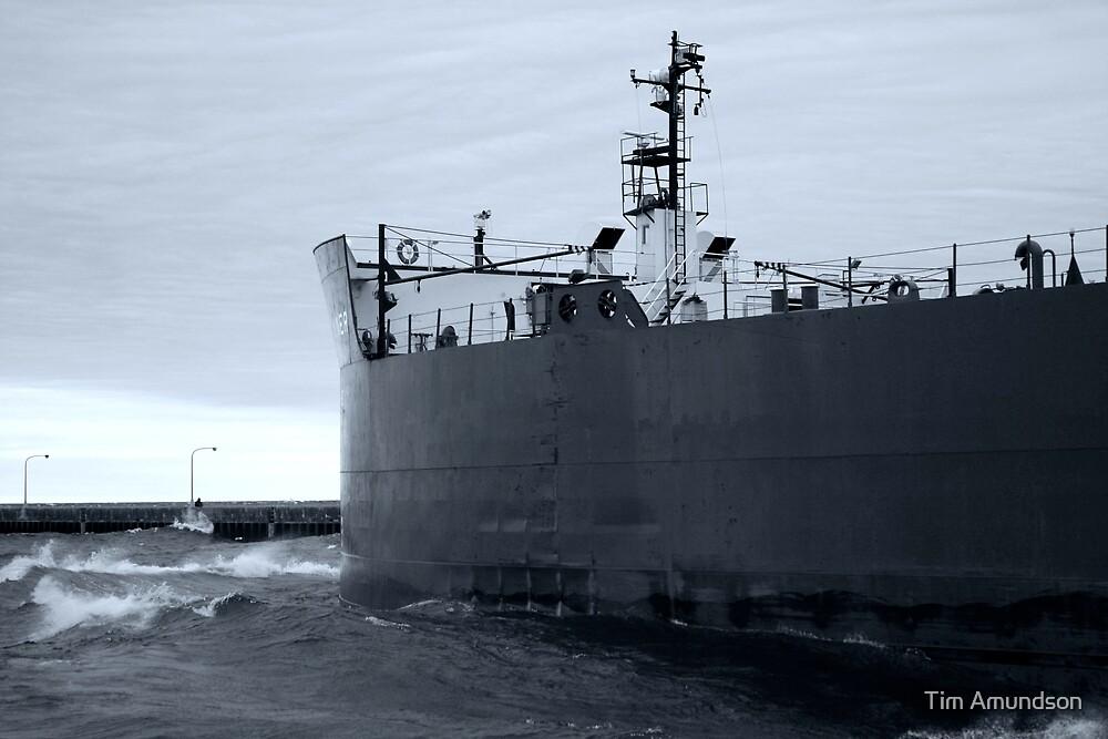 Holly Ship by Tim Amundson
