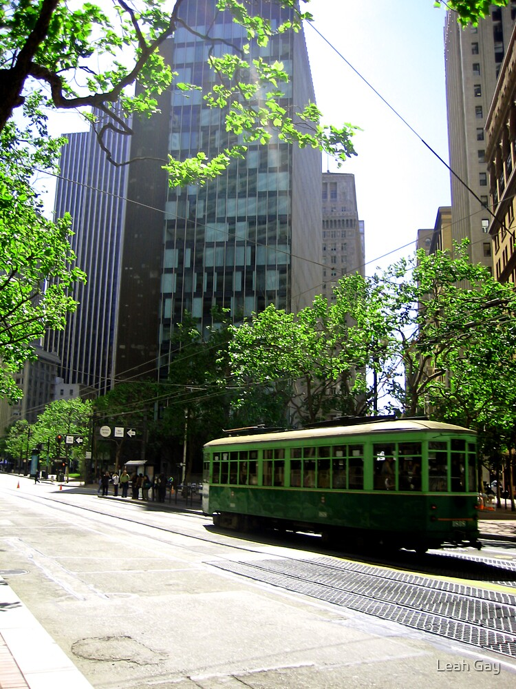 Trams by Leah Gay