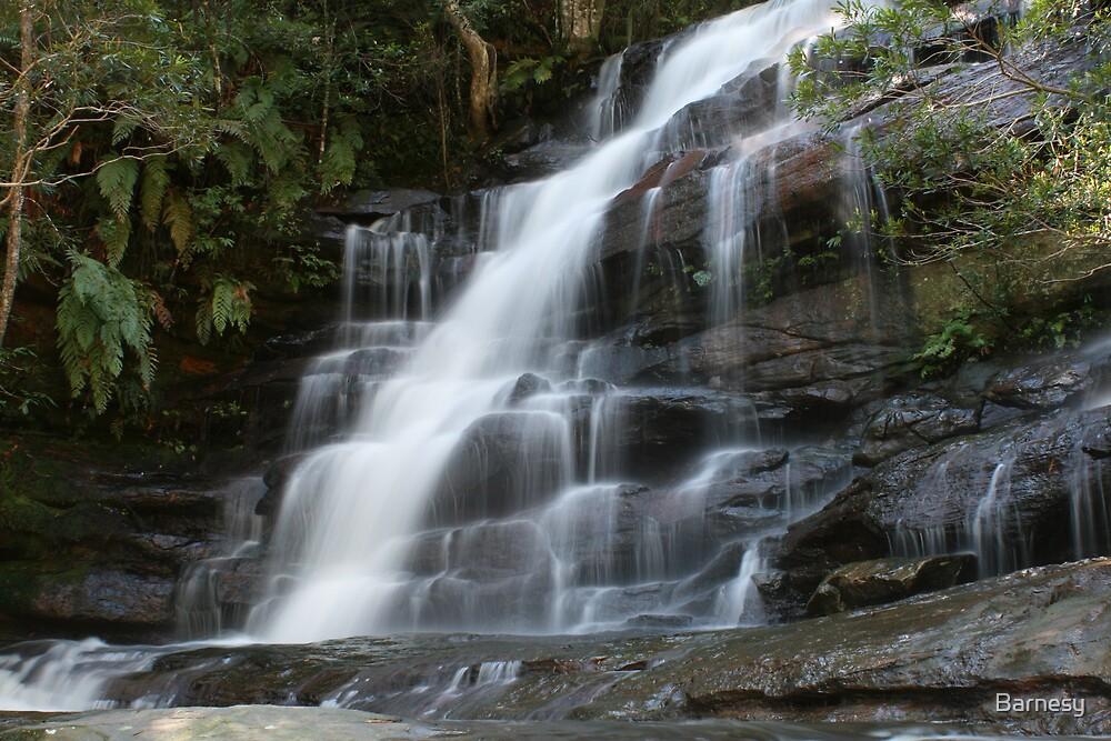 Somersby Falls 1 by Barnesy