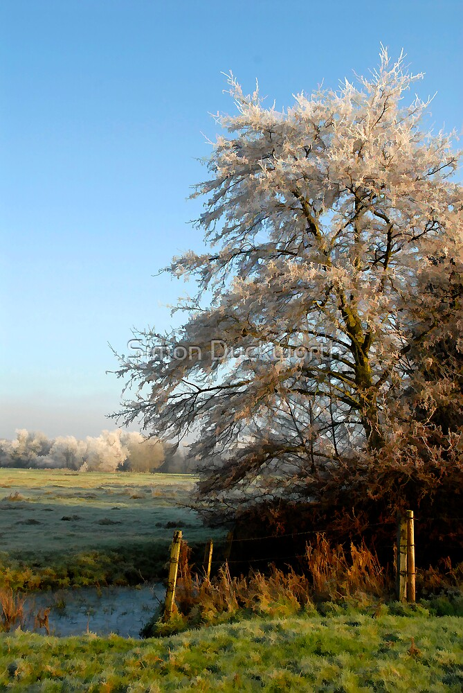 Frosty View by Simon Duckworth