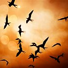 Frigate Birds Over Puerto Lopez by Al Bourassa