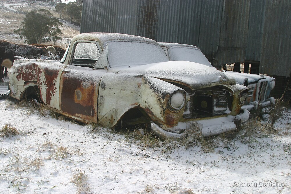 Snow Machinery by Anthony Cornelius