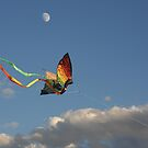 Flying High Butterfly by CarolM