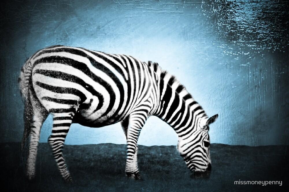 Zebra zen by missmoneypenny