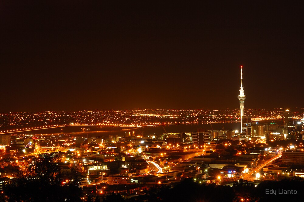 View from Mt Eden by Edy Lianto