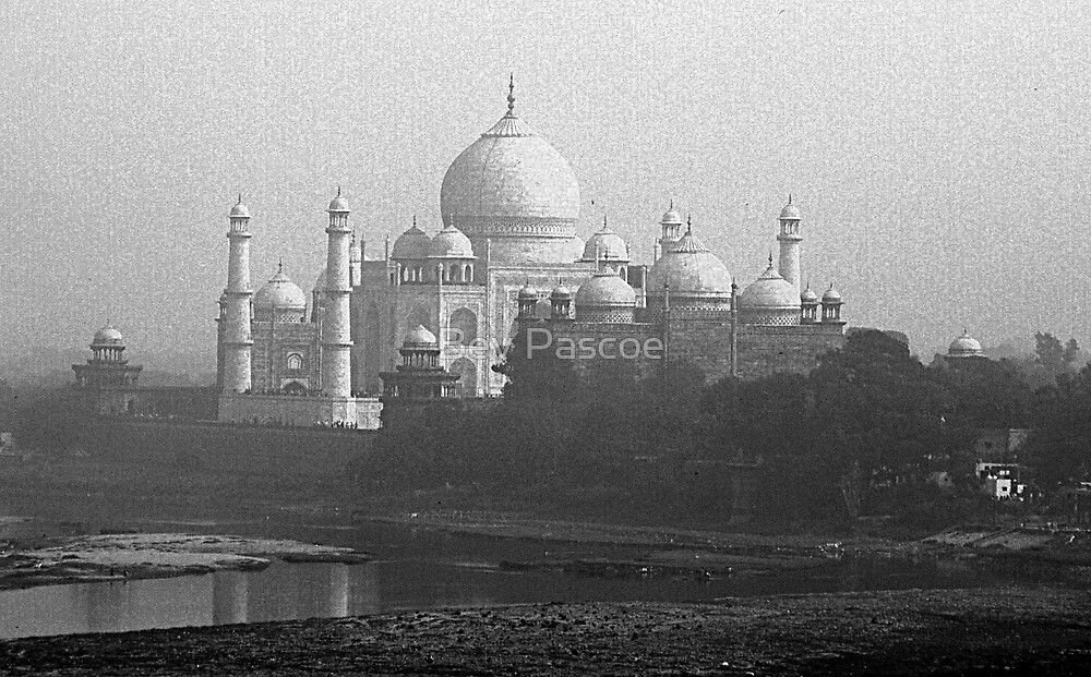 Taj Mahal in Mono by Bev Pascoe