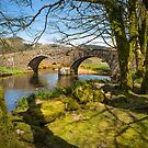 Two Bridges Dartmoor by Dave Hare