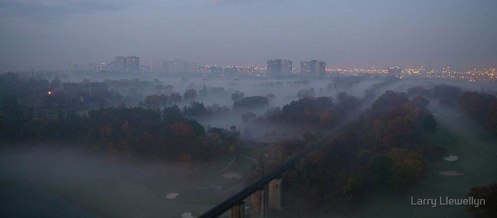 FOG in the MORNING by Larry Llewellyn
