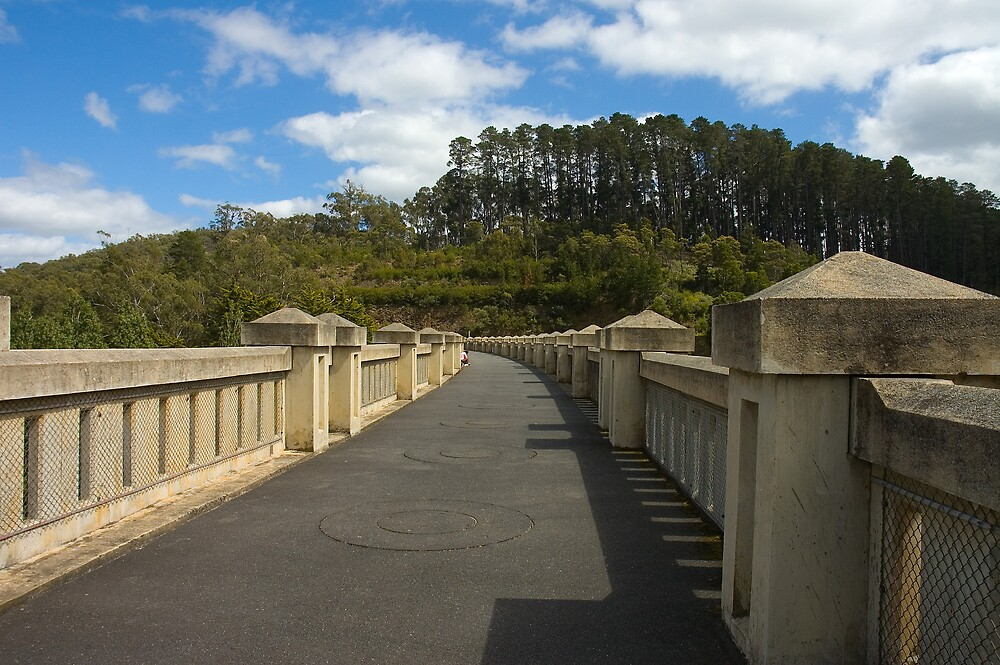 Top of the Dam, Maroondah Reservoir by Roger Olasiman