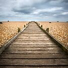 Dungeness Beach Walkway by Dave Hare