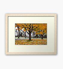 Autumn Dusting {5789} Framed Print