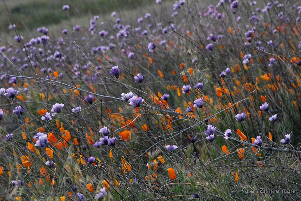 Heralding Spring by Karen Zimmerman