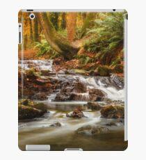 Drumleck River In Autumn iPad Case/Skin