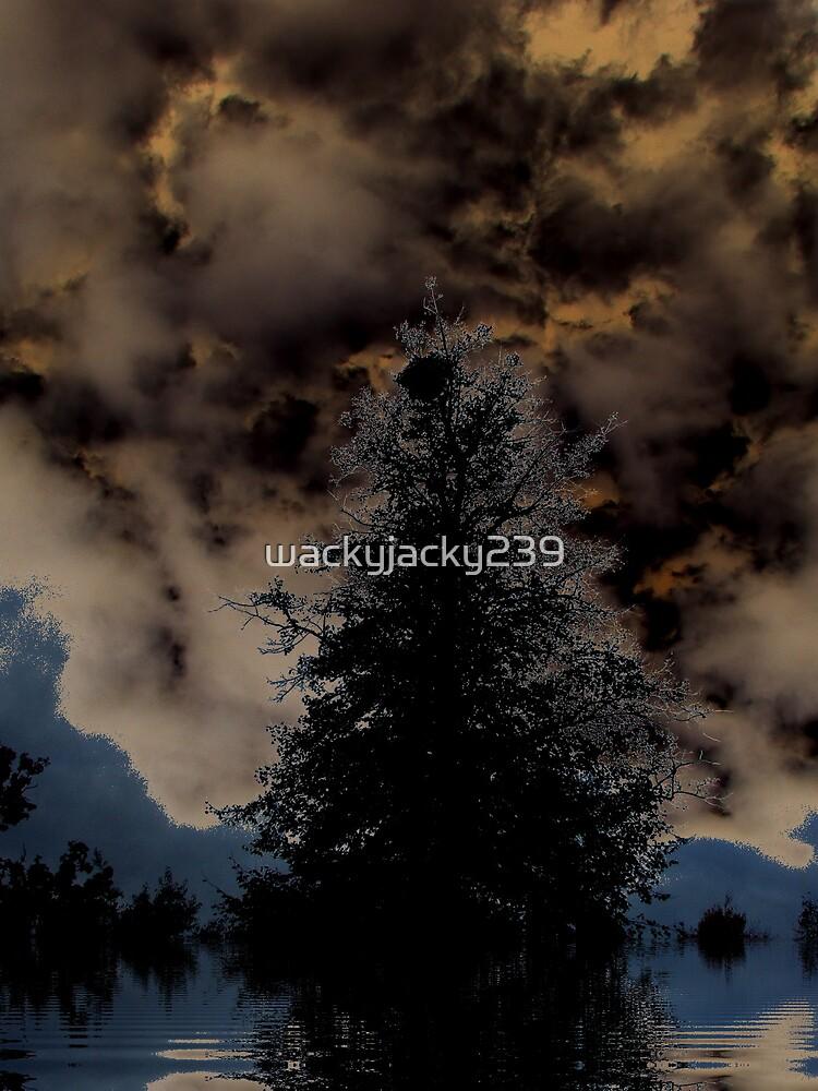 moody sky by wackyjacky239